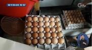 '껍데기 깨진 계란' 불법 유통 무더기 적발